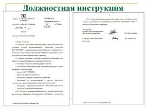 Должностная инструкция директору центра социального обслуживания (17-й разряд)