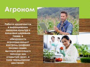 Должностная инструкция агроному