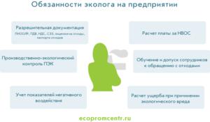 Должностная инструкция инженеру по охране окружающей среды (экологу)