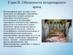 Должностная инструкция ветеринарному врачу