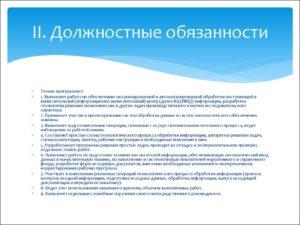 Должностная инструкция специалисту по сопровождению программного обеспечения