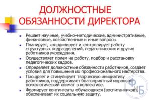 Должностная инструкция заместителю директора по общим вопросам