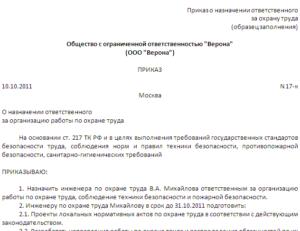 Приказ о назначении проверки наличия и состояния личных дел в организации (Образец заполнения)