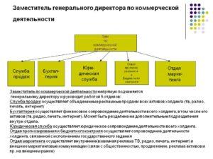 Должностная инструкция заместителю директора по коммерческим вопросам
