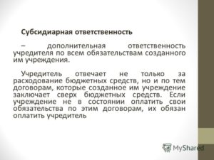 Исковое заявление о взыскании задолженности с учредителей организации в порядке субсидиарной ответственности