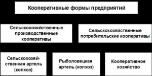 Примерный устав колхоза (сельскохозяйственного производственного кооператива)