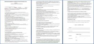 Договор на оказание консультационных услуг по вопросам хозяйственной деятельности