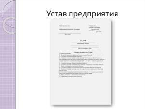 Устав частного торгово-производственного унитарного предприятия
