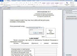 Анкета к заявлению о приеме в гражданство (о выходе из гражданства)