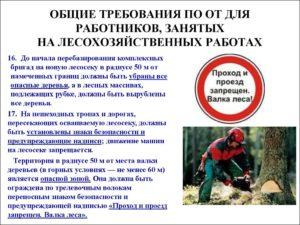 Рабочая инструкция вальщику леса (6-й разряд)