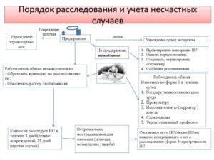 Акт служебного расследования несчастного случая с пассажиром на эскалаторе