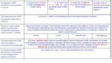 Примерная форма предложения на участие в процедуре закупки