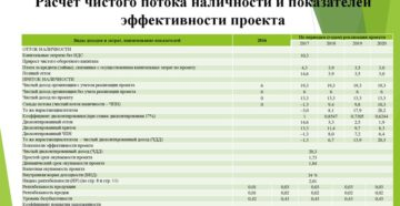 Расчет чистого потока наличности и показателей эффективности проекта (при разработке бизнес-планов инвестиционных проектов)