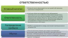 Устав общества с дополнительной ответственностью