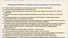 Программа (инструкция) вводного инструктажа по охране труда
