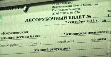 Лесной билет
