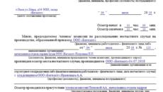 Протокол осмотра места несчастного случая (Образец заполнения)