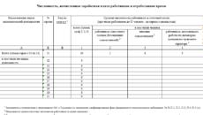 Отчет по труду (Форма 1-т (сводная) (годовая), код формы по ОКУД 0604054)