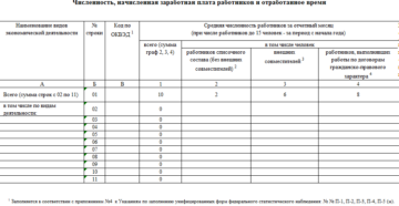 Отчет по труду (Форма 1-т (некоммерческие) (годовая))
