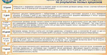 Договор аренды участка лесного фонда для осуществления лесопользования