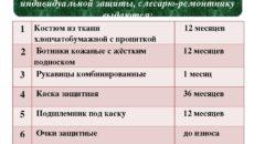 Нормы и сроки выдачи спецодежды и других средств индивидуальной защиты (Примерная форма)